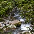 Горная речка в парке Мундо Авентура
