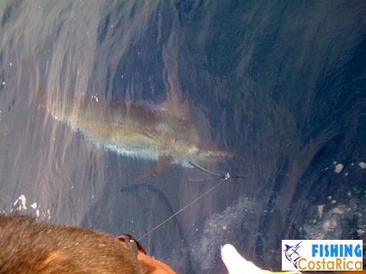 Океанская рыбалка 2