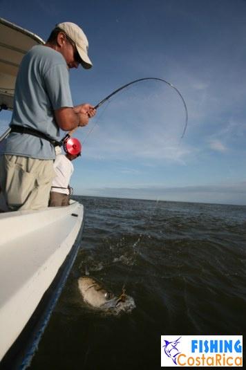 Океанская рыбалка 5