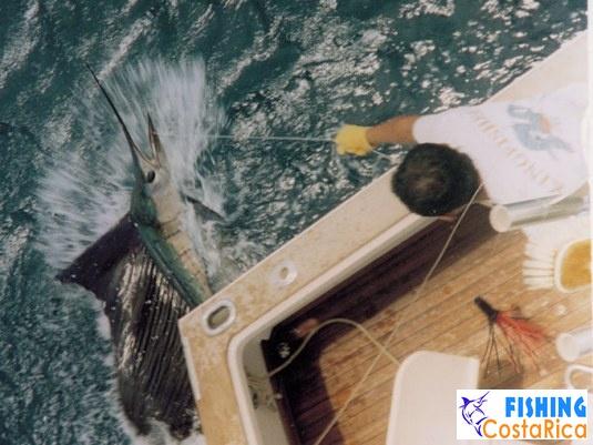 Рыбалка на океане - Коста-Рика 0