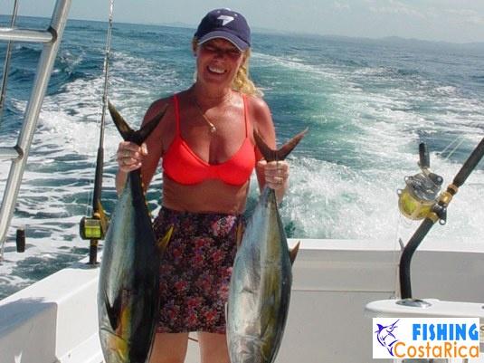 Желтоперые тунцы