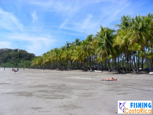 Пейзажи Коста-Рики 0
