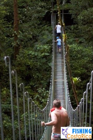 Подвесной мост в парке Аренал Мундо Авентура