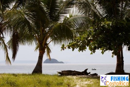 Пейзажи Коста-Рики 4
