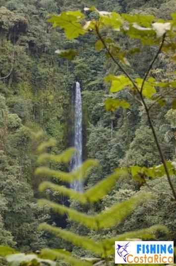 Водопад Пино Бланко