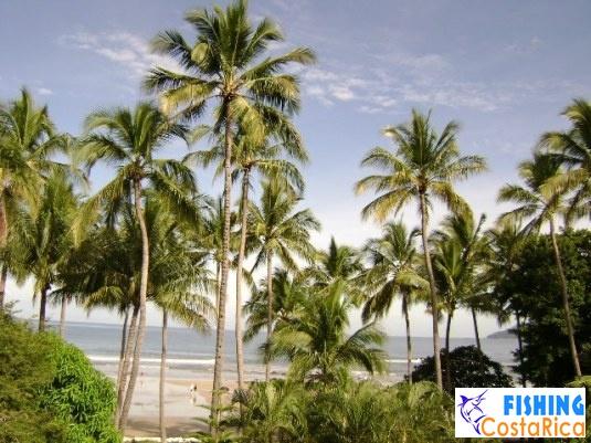 Пейзажи Коста-Рики 6