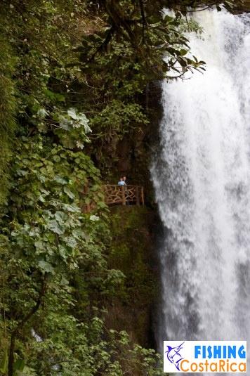 Водопад в La Paz Waterfall Gardens