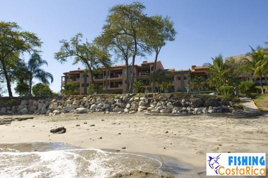 Отель «Flamingo Beach Resort» 24