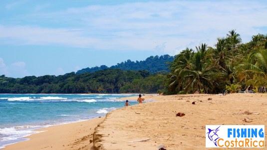 Пляж Пунта Ува - Карибское побережье Коста-Рики